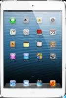Apple iPad Mini 16GB with Wi-Fi White & Silver белый