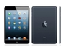 Apple iPad Mini 16GB with Wi-Fi Black & Slate черный